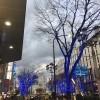 大津通のイルミネーションにも負けず輝いています。
